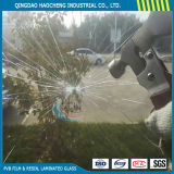 China Architectural Thick 6.38 mm Clear Tempered Laminated Glass with PVB Film