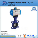 Dn600 Butterfly Value and Pneumatic Actuators/Pneumatic Control Butterfly Valve