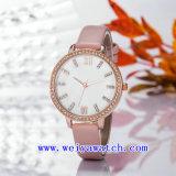 Waterproof Watch Alloy Wrist Watches (WY-17027B)