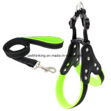 Real Leather and Airmesh Dog Harness Set