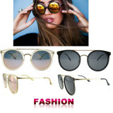 Wholesale Polarized Sunglasses Newest Fashion Sunglasses Tr90 Sunglasses