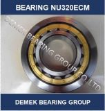 Cylindrical Roller Bearing Nu320 Ecm with Brass Cage