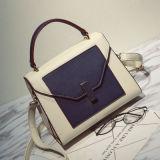 2017 New Stylish Hand Bag Fashion Crossbody Bag Hcy-3005