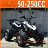 50cc 70cc 90cc 110cc Children Quad