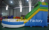 Giant Inflatable Water Slides Swimming Pools for Adult Toy (RC-017)