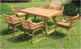 New Outdoor Garden Rattan Dining Set (WS-15595)