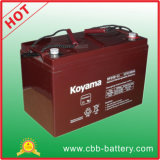 High Quality 100ah 12V Solar Battery Lead Acid AGM Battery