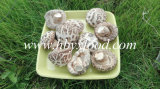Air Dried Deep White Flower Mushroom Factory