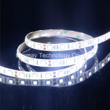 High Lumen UL LED Strips with super bright LED