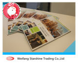 Coldset Color Printing Paper for Book and Magazine