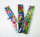 Custom Plastic Brand Ruler 30 Cm Size