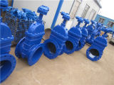Flanged Ductile Iron Sluice Gate Valve for Water