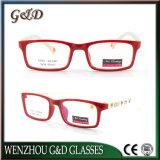 Fashion High Quality Tr90 Eyewear Kids Optical Glasse Frame 5636