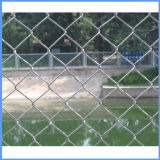 Diamond Shape Galvanized/PVC Coated Wire Fence