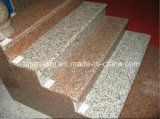 Polished Granite Stone Stairs/Steps/Tread with Different Color