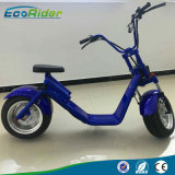 Two Wheel Electric Scooter for Adults, 60V Fat Tires E-Scooter