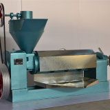 Cooked Peanuts Oil Press (6YL-105-3)