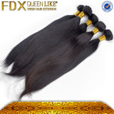 Virgin Remy Hair /Brazilian Hair (FDX--ST-085)