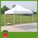 Heavy-Duty Hex Aluminum Folding Tent for Hot Sale