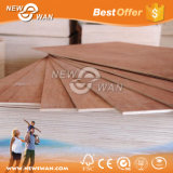 2-30mm China Veneered Commercial Plywood
