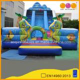 Cute Fish Inflatable Slide (AQ01123)