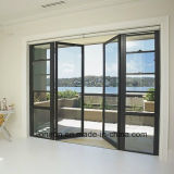 Commercial and Residential French Style Folding Iron Doors Design