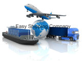 Consolidate Efficient Ocean Shipping Service (LCL/FCL) From China to Germany