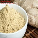 Yellow Ginger Powder 5% Gingerols Ginger Extract Powder