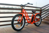 500W Fat Tire Electric Bicycle Beach Electric Bike for Lady