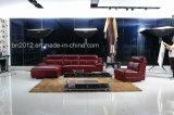 High Quality Leather Sofa (SBL-9092)