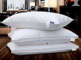 Luxury Home Goose Down Pillow (SFP15-054)