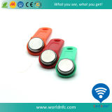 TM Card Ibutton Key RW1990 for Copy TM1990A Card (RW1990)