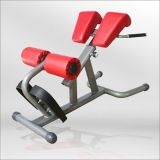 Abdominal Exerciser/ Home Gym Used Equipment/ Fitness Equipment/ Roman Chair (BFT-2033)