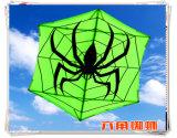 Beautiful 180cm*150cm Big Big Big Dual Line Sports Kite