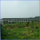 Ge Lexan Polycarbonate Hollow Sheet for Greenhouse