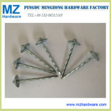 High Quality Electro Galvanized Umbrella Head Roofing Nail