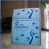 Ten Years Guarantee ISO Certification Polycarbonate 4X4 Transparent Plastic Awning