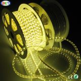 220V 240V SMD5050 60LED Per Meter 50m LED Strip Light