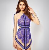 European and American Sexy Lace Dress/ Fashion Women′s Dress
