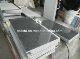 Cheap Price of G654 Tiles Cut to Sizes