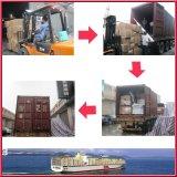 Sea Freight From China to Rio De Janeiro, Brazil