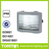 Flood Light for Outdoor Use