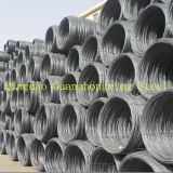 High Quality Hot Rolled Steel Wire Rod for Building SAE1008