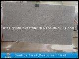 Cheap Gang Saw Polished G603 Granite Slabs for Tiles, Countertops