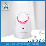 Home Use Portable Beauty Instrument Nano Anion Facial Steamer