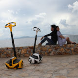 Electric Scooter Personal Transporter