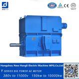 Ykk Low Voltage 380V 600rpm 1500kw AC Motor