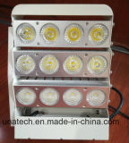 Advertising Media Outdoor Water Proof LED Bulb Lamps Outdoor Sticker Billboard LED Light