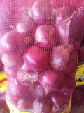 Fresh Onions Importers in Columbia Market