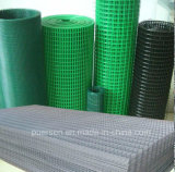 Direct Factory Hot Sale Galvanized Welded Wire Mesh